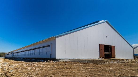 Сельскохозяйственное строение 4